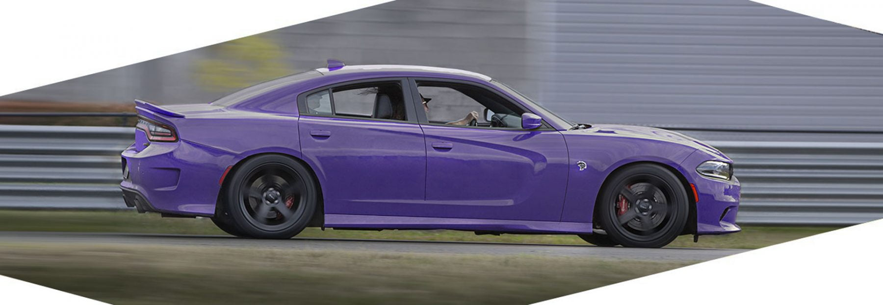 Plumcrazy Dodge Charger